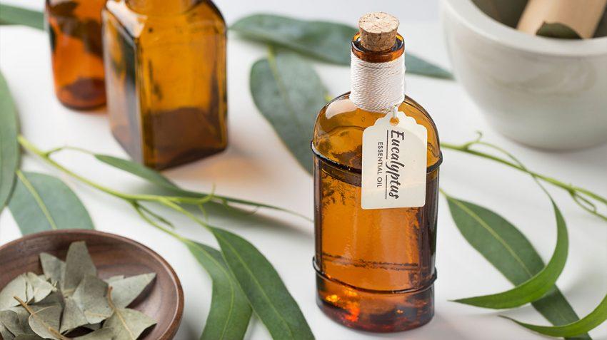 Eucalyptus-Essential-Oil