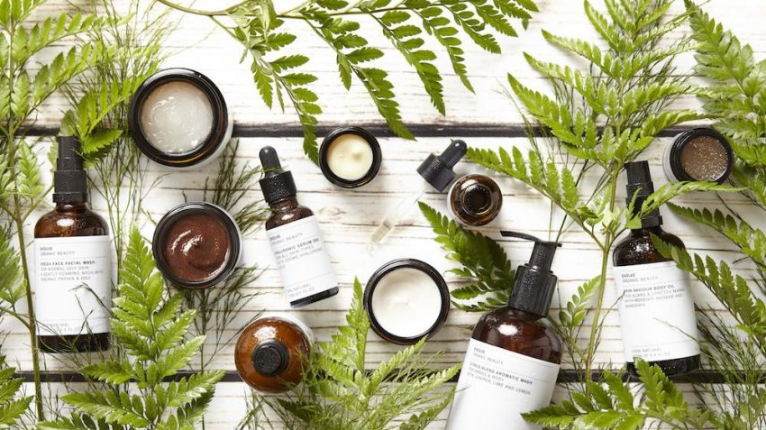 natural skincare ingredients surrounded by leaves